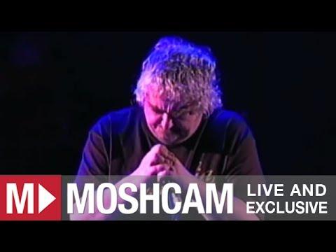 Daniel Johnston - Man Obsessed | Live in Sydney | Moshcam