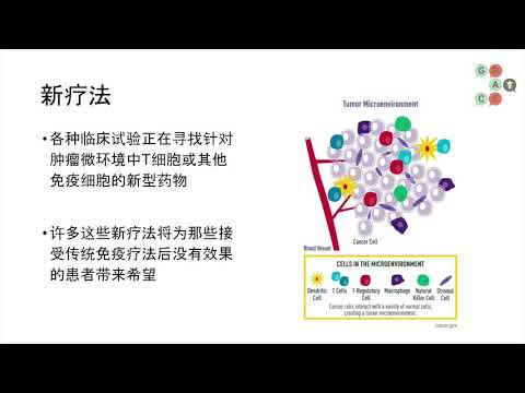 Lung Cancer Video Library Mandarin - Combinations of Immunotherapy