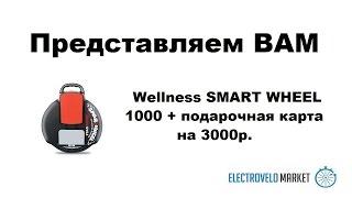 Wellness SMART WHEEL 1000