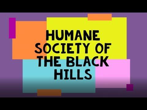 Humane Society Of The Black Hills