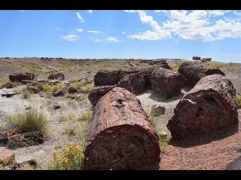 Rockin it at Petrified Forest National Park, Holbrook, AZ