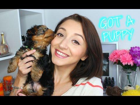 GOT A PUPPY!!! + DOG HAUL 🐾