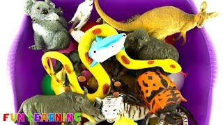 Learn Wild Animals Names For Kids with Fun Sea Animal and Zoo Animal Toys in Purple Water Tub