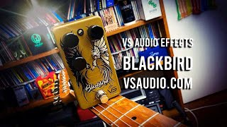 VS Audio Effects: BLACKBIRD OD