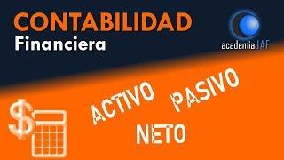 Activo, Pasivo y Neto - Contabilidad Capítulo 3 curso básico - academia JAF