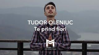 Tudor Oleniuc - Te prind fiori