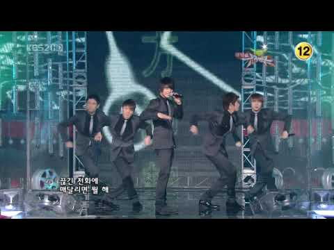 TVXQ - Wrong Number  (20081121 Music Bank )