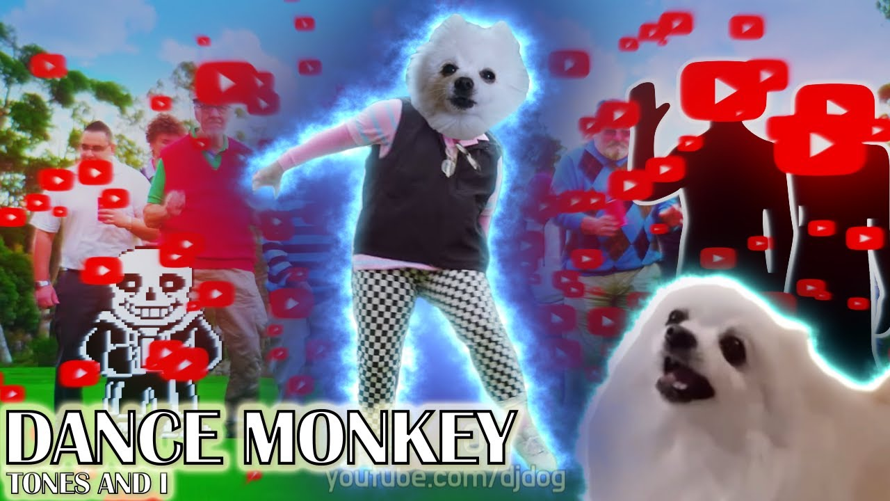 DANCE MONKEY (댄스 몽키) 강아지 리믹스 (Gabe the Dog Remix)