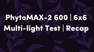 6x6 | PhytoMAX-2 600 | Multi-light Test | Breakdown