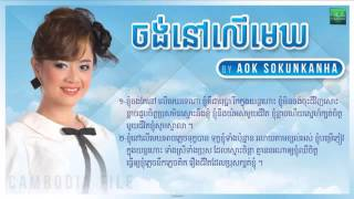 aok sokun kanha new songs 2014 jong nov ler mek ចង ន ល ម ឃ kanha youtube 2