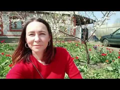 Погода, климат, весна в городе Лиски. 25 апреля 2019г. Жилой дом в г. Лиски Воронежская область.