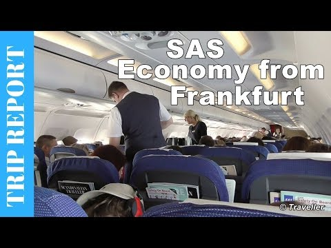 Scandinavian Airlines Airbus A320 Economy Class flight review from Frankfurt - OY-KAM