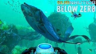 Download lagu 謎の事故で大破した深海の基地へ!そして大事件が起きてしまった - Subnautica: Below Zero #5