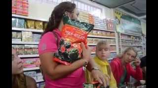 видео Препараты артишока: лекарства, БАДы, чай из Вьетнама.