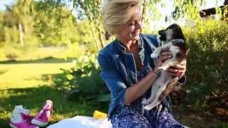 Собачка в добрые руки! Возьми щенка | рукавички