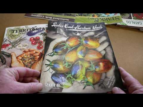 The Truth About Seed Catalogs