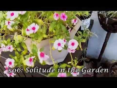 Getting Ready S22W04: Solitude in the Garden