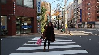 Gambar cover TheDesignerDiary (5) - GOES TO TOKYO!! (NIPPORI, AIRBNB, GINZA, TSUKIJI)