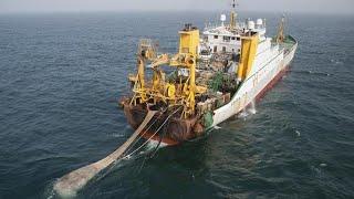 Wow Net Fishing - Big Fishing Catching Skill Net Fishing In The Sea 03