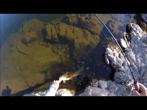 Fishing The Lower Salt River In Arizona