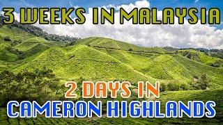 Malaysia, Cameron Highlands - May 2016 - GoPro Hero 3+