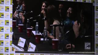 Community panel San Diego Comic Con 2013