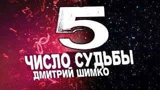 Число Судьбы '5'. Астротиполог - Нумеролог - Дмитрий Шимко