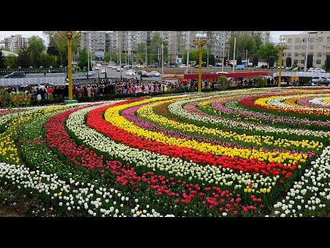 Коронавируса нет, 600 тыс. цветов. Таджикистан продолжает праздновать Навруз