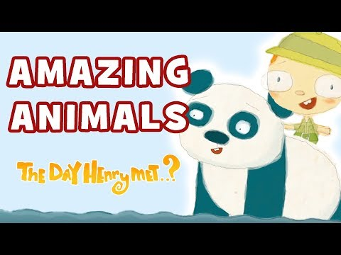 The Day Henry Met - Amazing Animals | Henry Helps