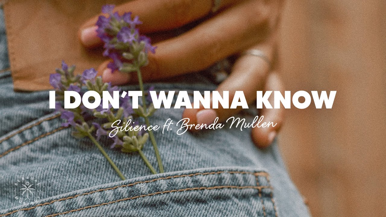 Silience - I Don't Wanna Know (Lyrics) ft. Brenda Mullen