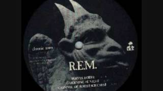 R.E.M. - Gardening At Night