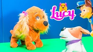 LUCY PUPPY Club Pets Lucy Obedient Puppy Fun at Dog Park + Cacamax + Wiggles Puppy Lucy Video Toy Re