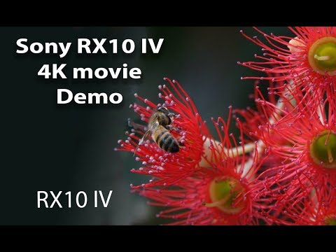 Sony RX10 IV & AX700 Slow Mo Samples Surface! - Hi Speed Cameras