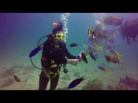 Open Water Certification Dive 2017, Tioman Island