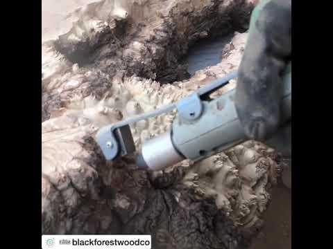 Kumla ceviz tomruğu kabuğu soyma