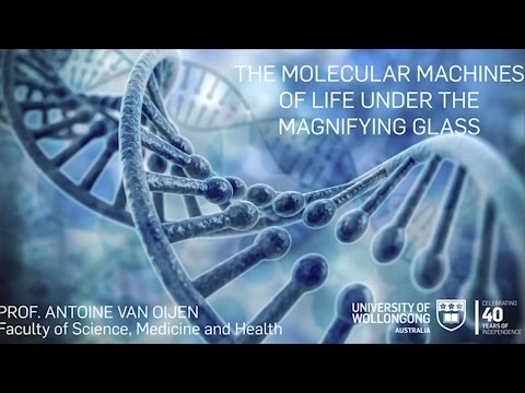 The Molecular Machines of Life Under the Magnifying Glass