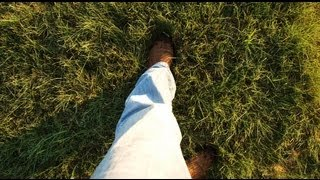 How to install Habiturf, A Native Turf Grass Lawn