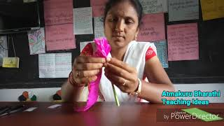 Gambar cover Flowers making with colour papers - on no bag day - Atmakuru Bharathi..
