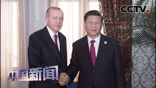 [中国新闻] 习近平会见土耳其总统埃尔多安 | CCTV中文国际