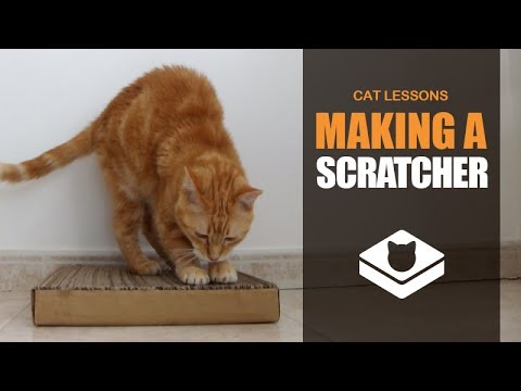 How to Make a Cat Scratcher
