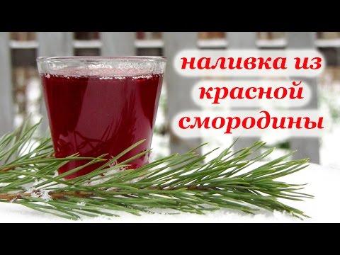 Рецепт наливка из красной смородины