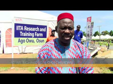 Osun State partners IITA to boost Agriculture