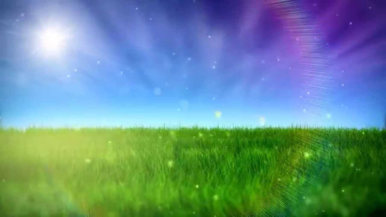 Free Nature Video BackGround - HD - YouTube