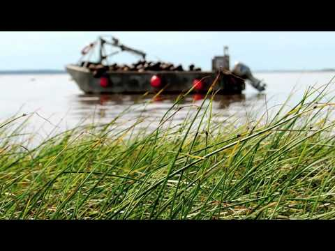 """This Is My Island"" ~ Prince Edward Island"