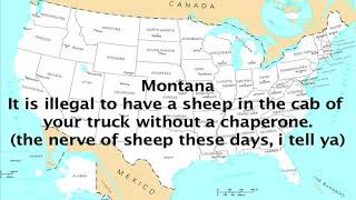 stupid state laws