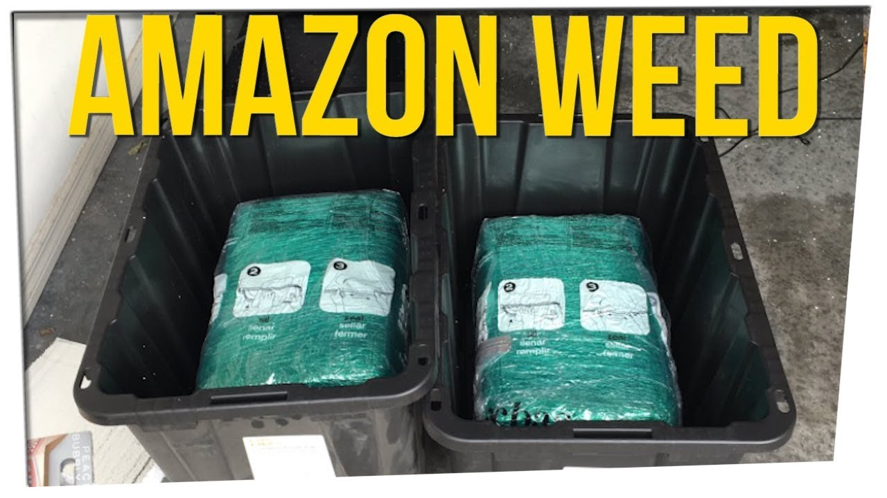 couple-discovers-65lbs-of-weed-in-amazon-order-ft-davidsocomedy