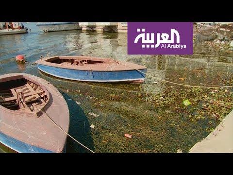مصر.. حملة لتنظيف مياه النيل  - نشر قبل 5 ساعة
