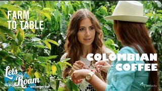 Colombian Coffee From Farm to Table - Let