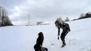 Dark snow - 2011