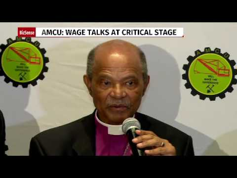 Disrupt capitalism to deal with inequalities: Amcu